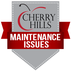 Report Maintenance Issues